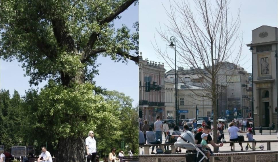 Film do artykułu: 10 Years Challenge w Lublinie. Aż trudno uwierzyć, że te miejsca tak kiedyś wyglądały (ZDJĘCIA)