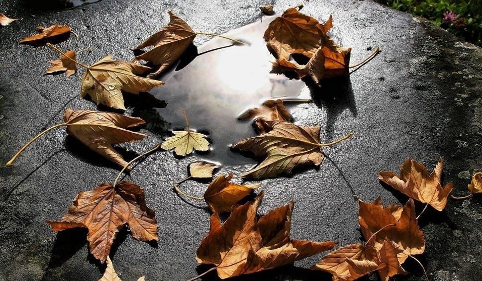Film do artykułu: Prognoza pogody na 1 listopada. Jaka będzie pogoda na Wszystkich Świętych? [18.10.2018]