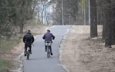 Rowerem po mieście. Ratusz chce poprawić infrastrukturę