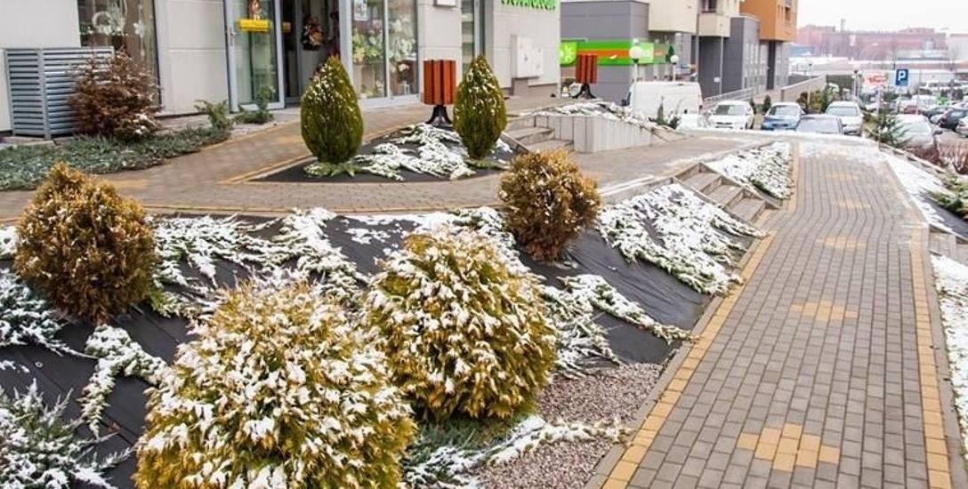 Bezpieczny dojazd i obniżone progi w sklepach i lokalach usługowych - Developres- Osiedle Zawiszy ul.Architektów