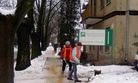 80 kobiet zostanie zatrudnionych od marca do końca roku między innymi przy pracach porządkowych na terenie miasta.