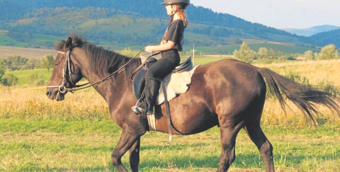 Dla wielu z nas koń był i jest towarzyszem, przyjacielem, bliską istotą, tak samo jak pies albo kot