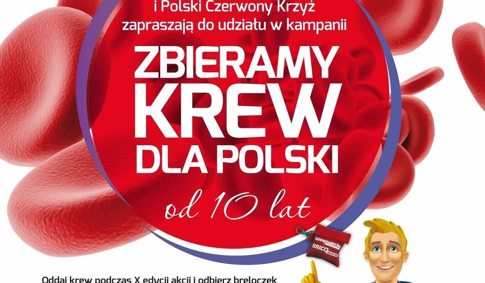 Film do artykułu: Akcja krwiodawstwa w Wodzisławiu Śląskim. Honorowi Dawcy Krwi z Pszowa zachęcają do oddawania krwi