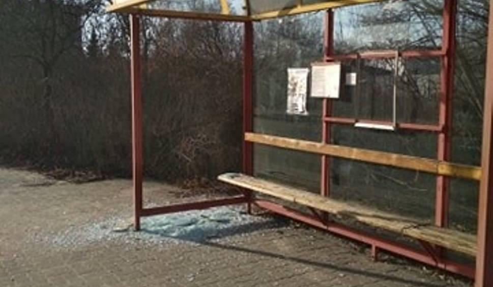 Film do artykułu: Zdewastowali przystanki w Skarżysku. Policja szuka sprawców [ZDJĘCIA]