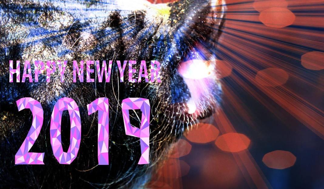 życzenia Noworoczne 2019 Piękne życzenia Na Nowy Rok Wyślij I