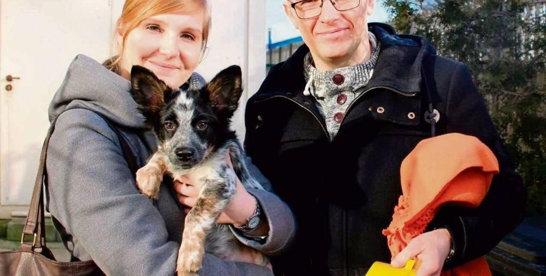 Jedni psy porzucają,   inni je przygarniają. Karolina i Łukasz adoptowali Kasię i dali jej na imię... Tekila