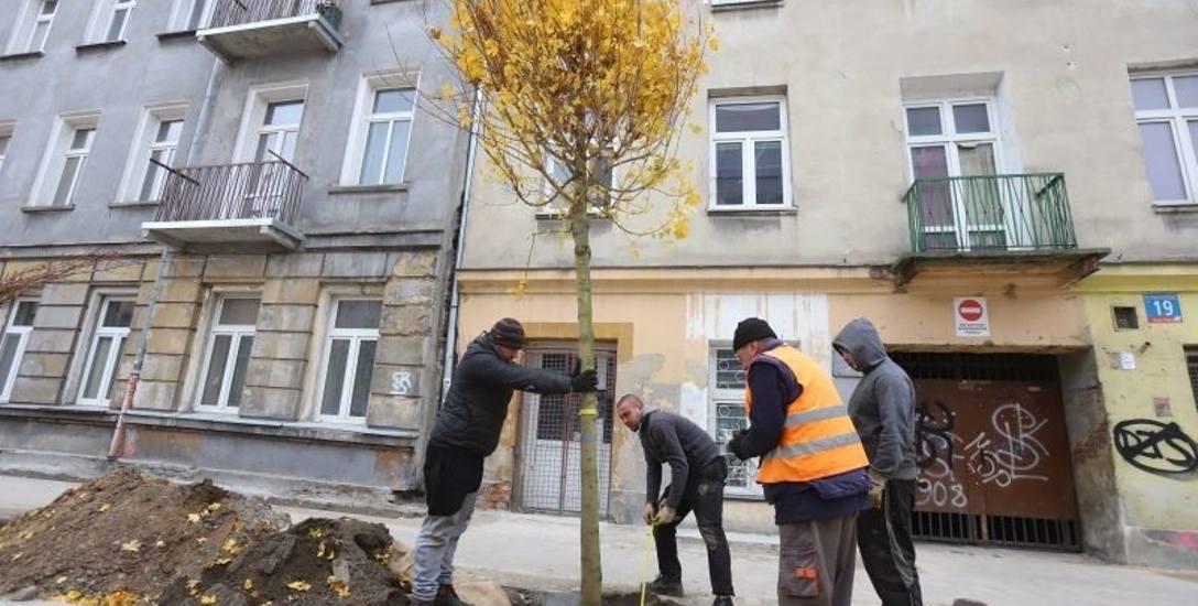 Do połowy grudnia ma zakończyć się budowa woonerfu na ul. Pogonowskiego