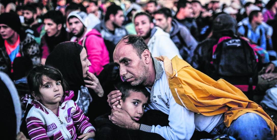 Europa śpi, a oni robią uchodźcom kanapki i uczą ich gry na pianinie