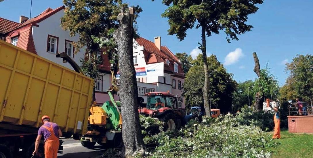 Blisko 40 drzew wycięto wzdłuż ulicy Kościuszki w Szczecinku. Cięcia nie ominęły i okolic starostwa powiatowego przy ulicy księcia Warcisława IV