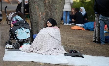 Niemcy walczą z falą uchodźców. Czy trzeba się bać? [ZDJĘCIA, WIDEO]