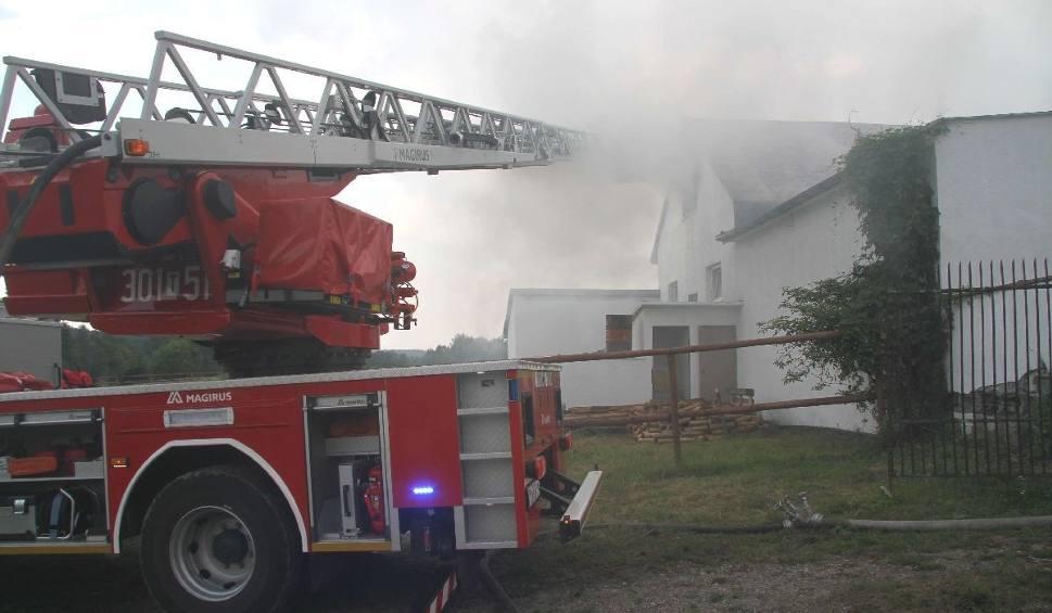 Film do artykułu: Pożar w stadninie koni w Cedzynie