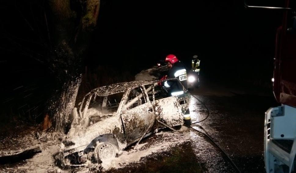 Film do artykułu: Wypadek w gminie Wojciechowice. Opel uderzył w drzewo i stanął w płomieniach
