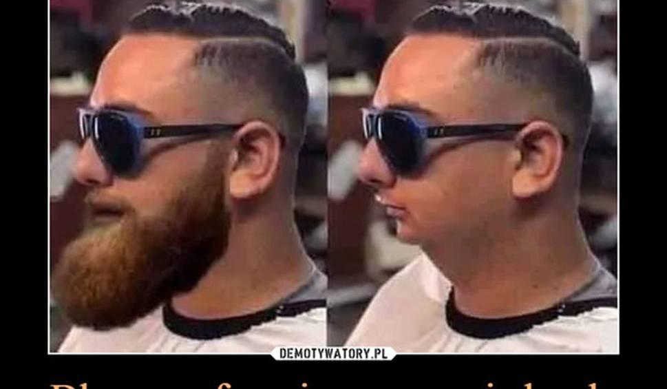 Film do artykułu: Najlepsze MEMY o brodaczach. Zobacz żarty o zapuszczaniu brody [8.05.2021]
