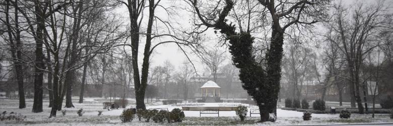 Mamy pierwszy śnieg w Żarach! Przez dwie godziny napadało sporo białego puchu. Zobaczcie sami!