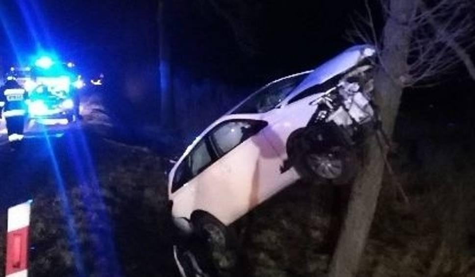 Film do artykułu: Wypadek na krajowej 73 w miejscowości Celiny. Samochód uderzył w przepust, a potem w drzewo