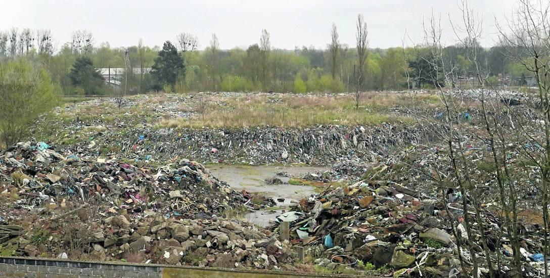 Spółka Ecorama opuściła nieruchomość przy ulicy Kamiennej pozostawiając hałdy śmieci. Miała odzyskiwać surowce z odpadów budowlanych, zatrudnić 70 osób.