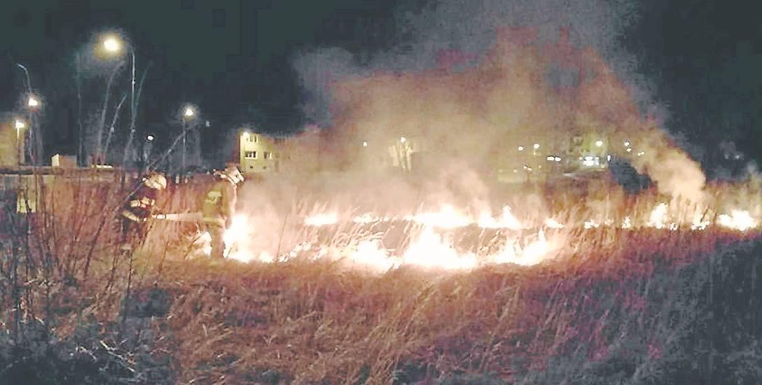 26 marca. Nocny pożar traw na nieużytkach w pobliżu ul. Zakole w Złocieńcu
