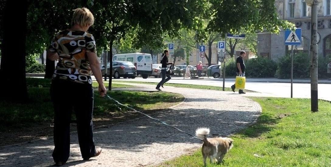 Sprzątaj po swoim psie. To twój obowiązek i oznaka kultury osobistej