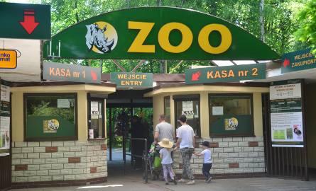 Kasjerki okradały poznańskie zoo