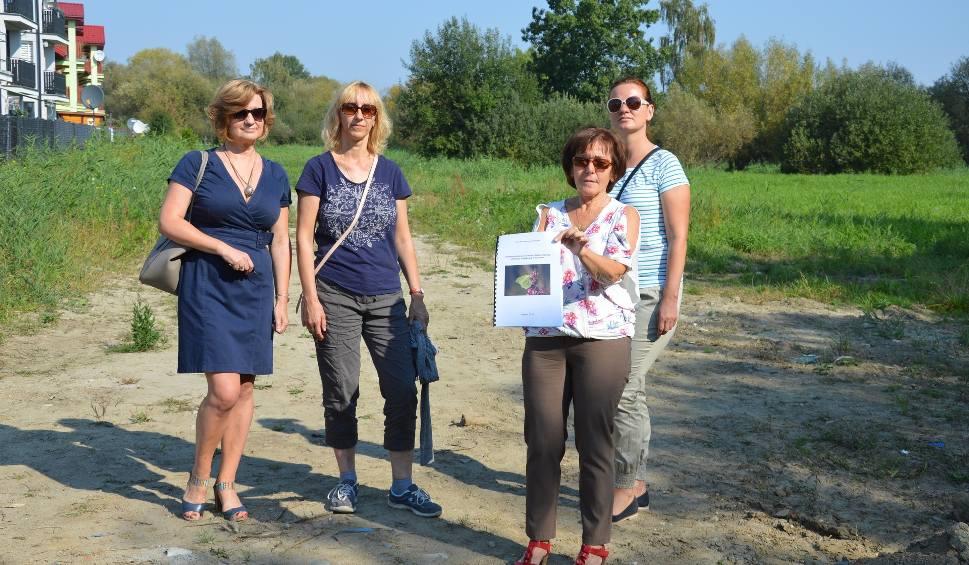 Film do artykułu: Tarnów. Chcą zachować tereny zielone na Piaskówce, a miasto i tak wycina cenne drzewa
