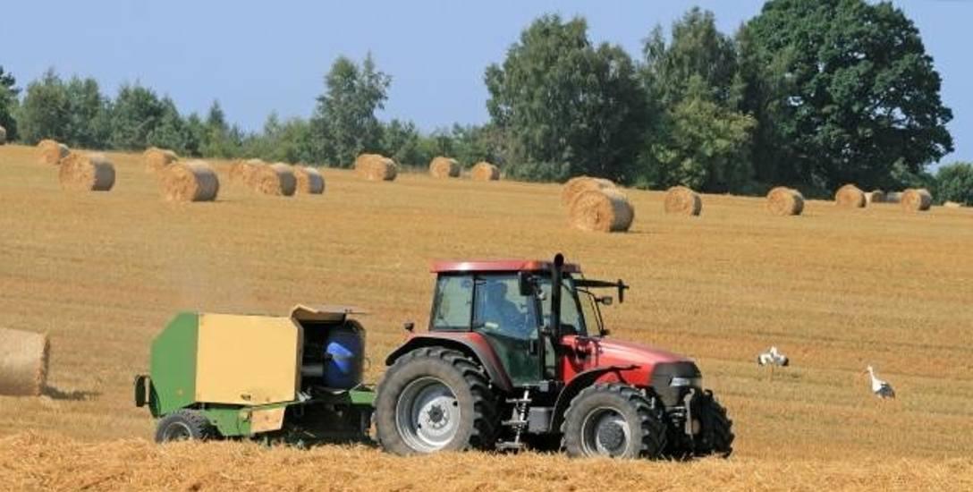 Agencja Nieruchomości Rolnych i Agencja Rynku Rolnego przestaną istnieć i zostaną zastąpione przez Krajowy Ośrodek Wsparcia Rolnictwa.