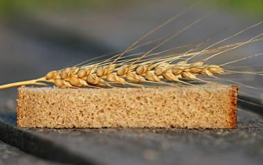 Maszynę do krojenia chleba w 1912 r.  wymyślił i opatentował Otto Frederick Rohwedder.