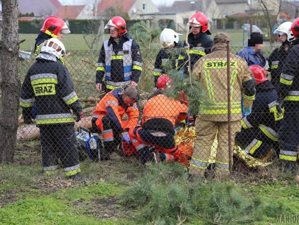 Drzewo przygniotło mężczyznę podczas wycinki w Domecku