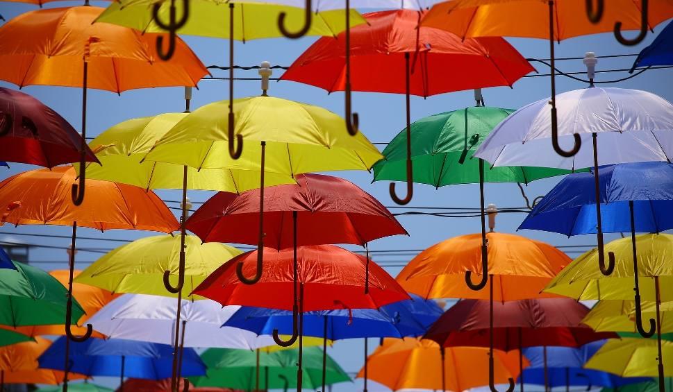 Film do artykułu: Gdzie kupić parasolkę? Najtańsze i najdroższe parasolki w Łodzi. Najlepsza parasolka w deszczowy dzień