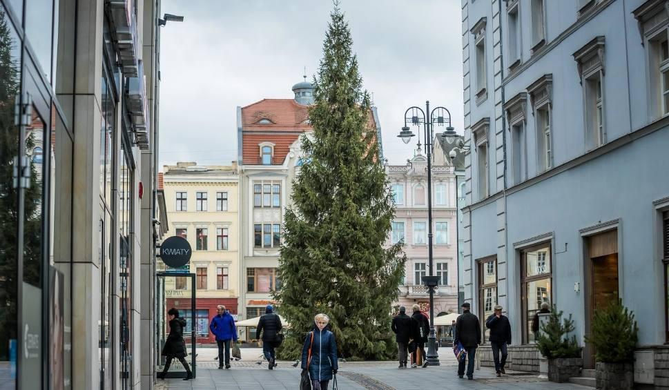 Film do artykułu: Nie tylko świąteczne jarmarki. Sprawdź, co robić w weekend w regionie [POŚPIESZNY DO KULTURY]