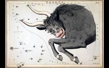 Horoskop miesięczny dla Byka. Sprawdź, co przygotowały dla Ciebie gwiazdy