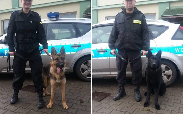 Bardzo dobryFantastyczny psy policyjne Szczecin - gs24.pl UU83