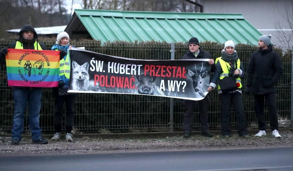 """Film do artykułu: Aktywiści BASTY! na """"dzikim spacerze"""". Protestowali przeciwko całkowitemu odstrzeleniu dzików w naszym regionie"""