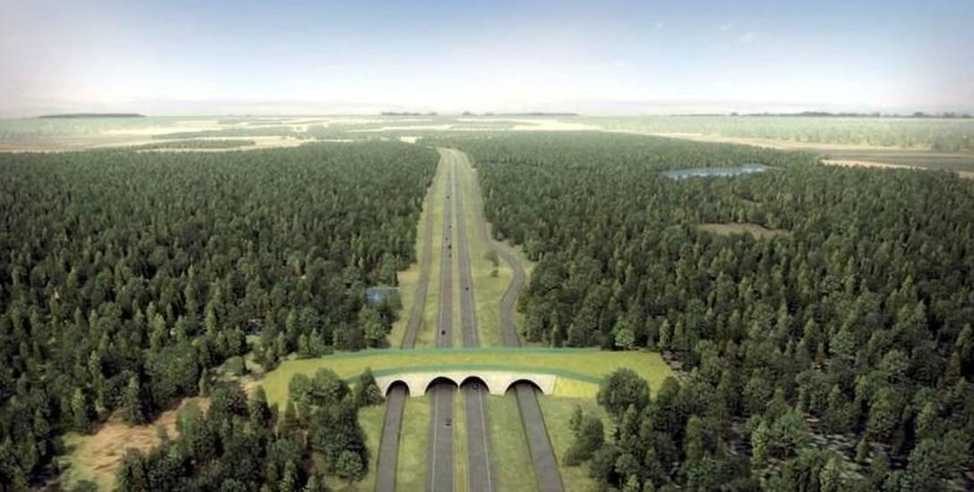 Po zapowiedzi o opóźnieniu budowy Trasy Kaszubskiej, gminy w regionie zbierają podpisy