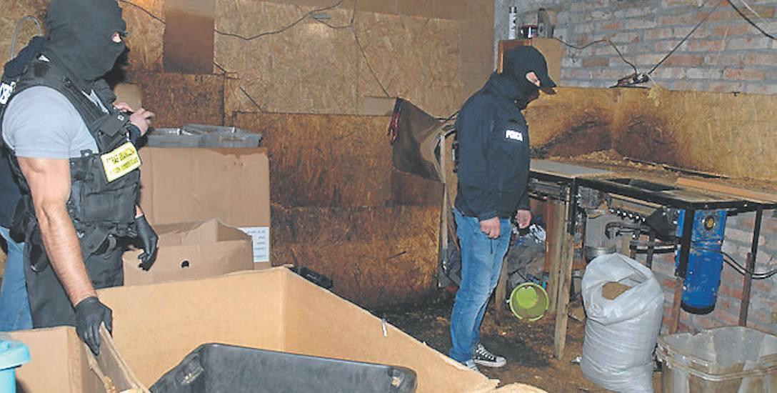 Nielegalną krajalnię tytoniu zlikwidowały na Pomorzu Straż Graniczna i Centralne Biuro Śledcze Policji
