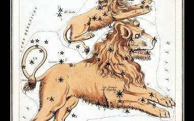 Horoskop miesięczny dla Lwa. Sprawdź, co przygotowały dla Ciebie gwiazdy