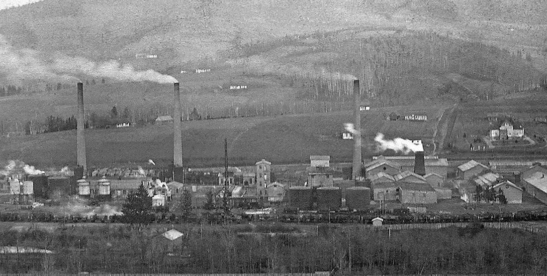 Budowa rafinerii w Sowlinach wpłynęła na rozwój urbanistyczny i gospodarczy w Limanowej. Do pracy w zakładzie przybyło wielu specjalistów ze swymi rodzinami
