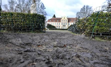 Apelują o ochronę przyrody Parku Oliwskiego [WIDEO]