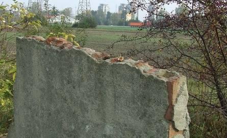 Dziś po pierwszej polkowickiej pływalni ocalała tylko ściana murowanej toalety, która stała przy basenie