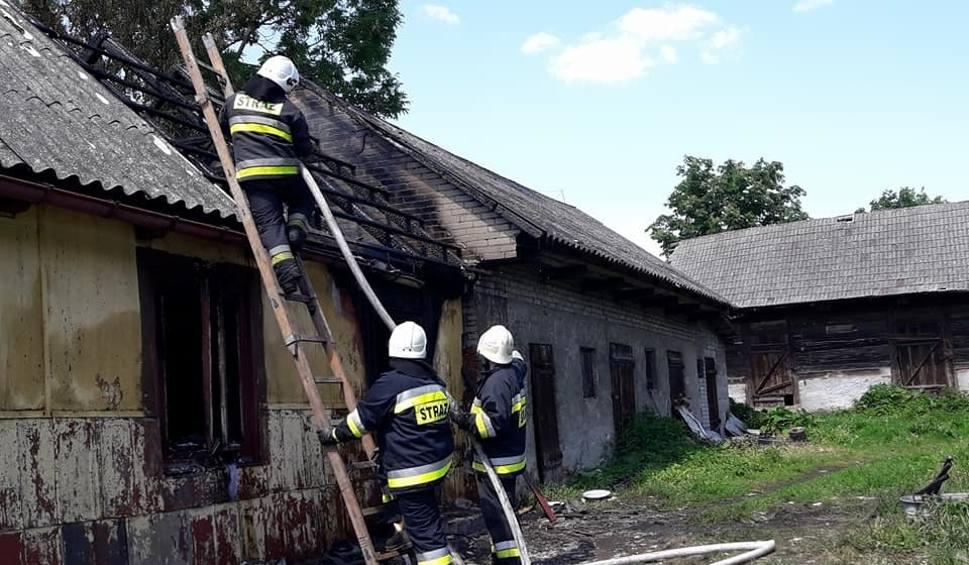 Film do artykułu: Wierzbica. Pożar domu mieszkalnego, jedna osoba trafiła do szpitala z poparzeniami