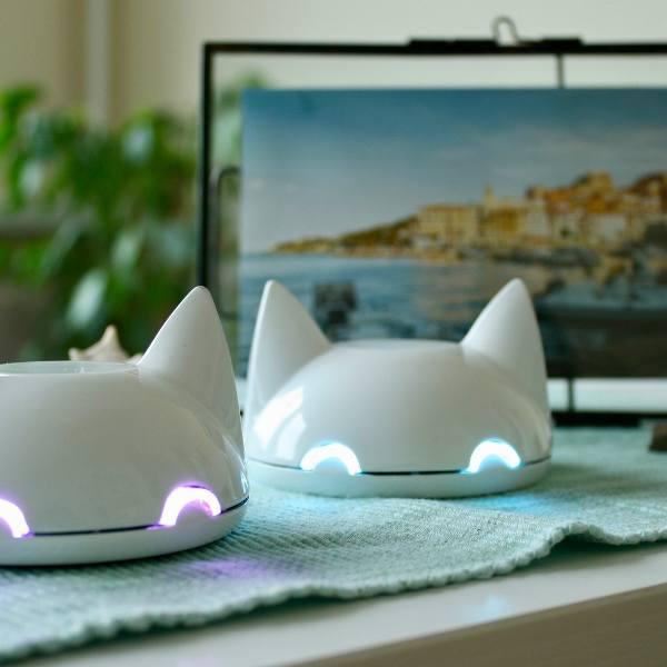 Anima – elektroniczny lisek przypominajka – zadebiutuje na Kickstarterze. Po szansę na masową produkcję