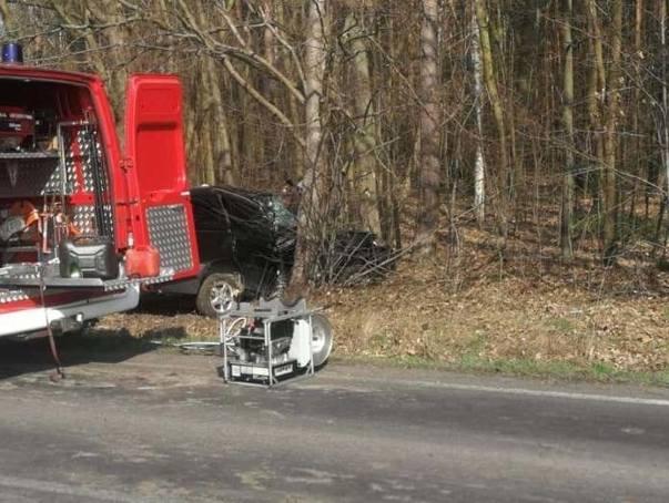 Kierowca mazdy wypadł z drogi na trasie koło Witnicy i uderzył w drzewo. Ranny trafił do szpitala. Do zdarzenia doszło w sobotę, 23 marca na drodze wojewódzkiej