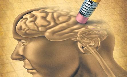 Z odkryć naukowców wynika, że mechanizmy rządzące naszą pamięcią są znacznie precyzyjniejsze, niż się wcześniej wydawało