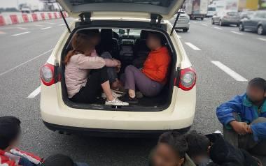 Dziewięcioro imigrantów z Wietnamu i Indii plus kierowca podróżowało w jednym samochodzie.