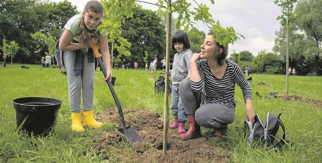 W maju tego roku park działający na podobnych zasadach powstał w Krakowie. Czy ten bydgoski będzie się cieszył zainteresowaniem? Przekonamy się 21 p