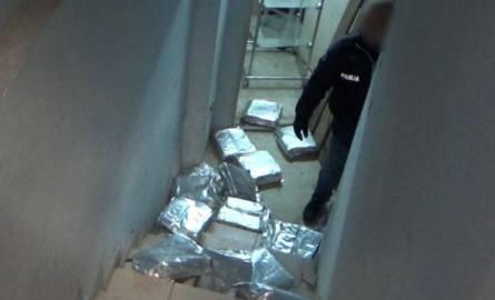 Policja rozbiła dwa gangi pseudokibiców, przejęła narkotyki za 2 mln zł