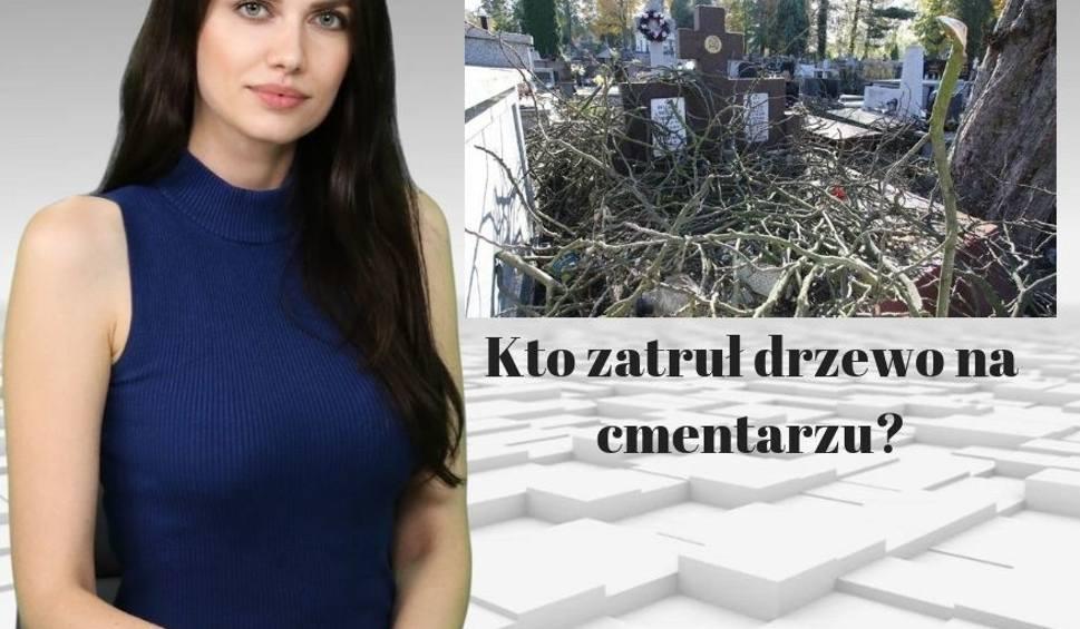 Film do artykułu: Truciciele grasowali na cmentarzu! WIADOMOŚCI ECHA DNIA