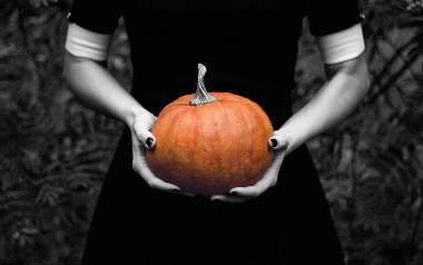 Dynia to od wieków nieodłączny element jesiennego menu. Poznaj królową jesieni!