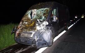 Wypadek Kolo Bialogardu Zderzenie Z Koniem Zdjecia Gk24 Pl