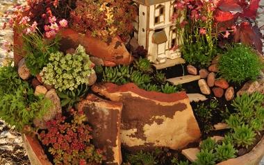 Miniaturowy ogród w ceramicznej donicy