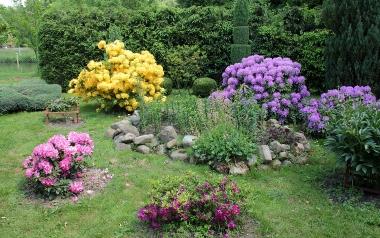 Ogród Pani Teresy i Pana Jana